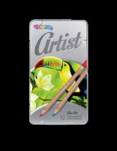Artist Coloured pencils 12...